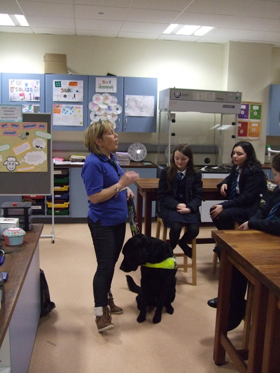 guide dogs for the blind elaine orwin06