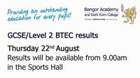 GCSE/Level 2 BTEC results.